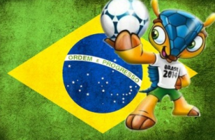 wallpapers-do-fuleco-copa-do-mundo-2014 (3)